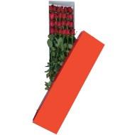 Caja con veinte y cuatro rosas